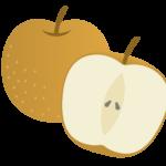 梨の保存方法、長持ちさせるコツは?日持ちはどのくらい